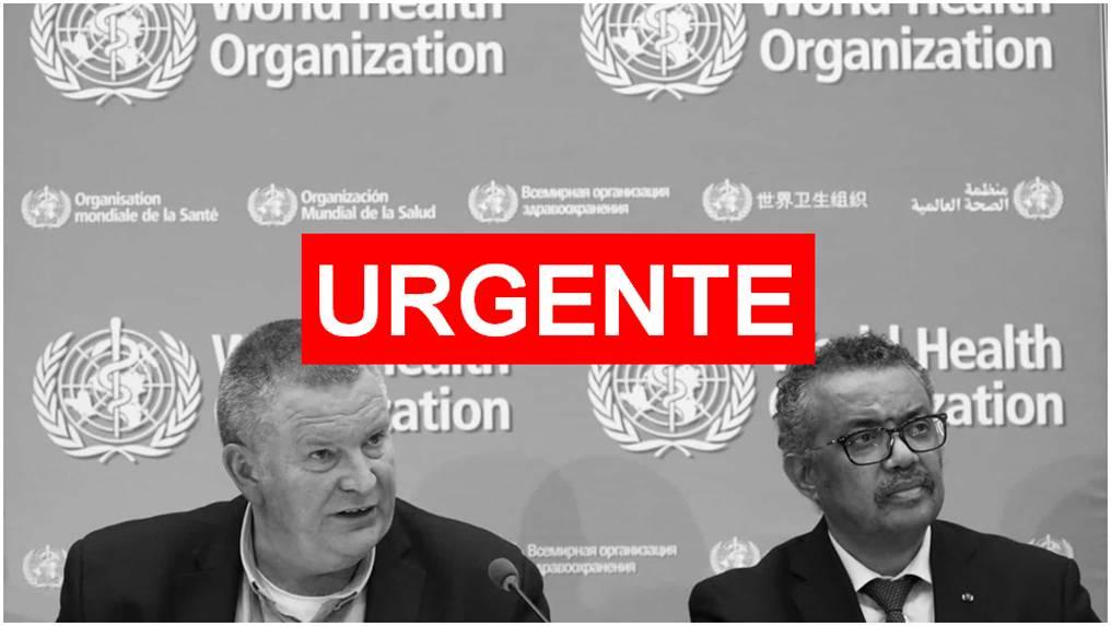 Diretor da OMS diz que a pandemia no Brasil dá sinais de estabilização