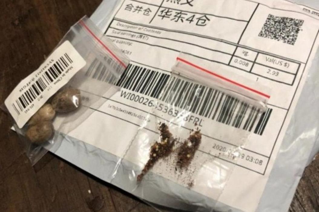 Brasileiros recebem pacotes misteriosos da China e autoridades dão alerta de risco